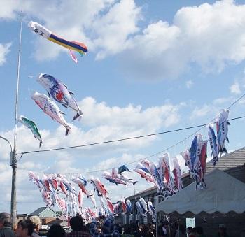 マグロ祭り2012